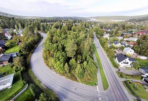 I skogsområdet vid Hagaskolan planeras det för 100 hyresrätter. Bild: Jan Olby