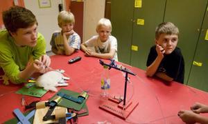 Anton Petterson visar hur hydraulik fungerar medan Andreas Edman, Hampus Moberg och Anton Larsson kollar om experimentet lyckas.