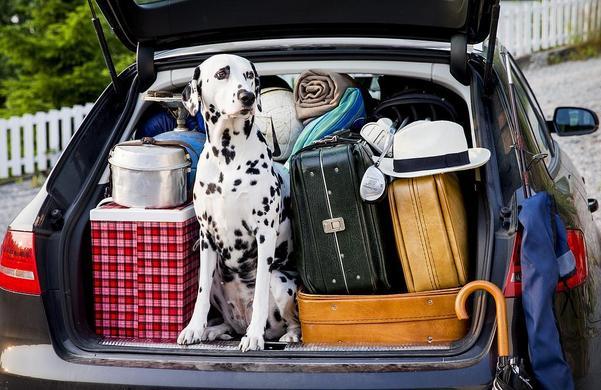 Många väljer bilen som färdmedel under sin semesterresa, vilket kan bli dyrt om man inte kör rätt. En av de viktigaste tipsen är att hålla en jämn hastighet, både för att hålla nere bränslekostnaden - men framförallt av säkerhetsskäl. Foto: Foto: Erlend Aas / TT