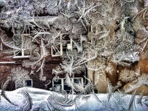 Februari: Iskristaller på ett trapphusfönster sätter igång den kreativa processen.