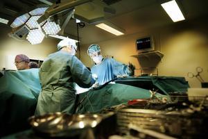 Läkarbristen kan kanske lösas om asylsökande läkare snabbare kan börja jobba.