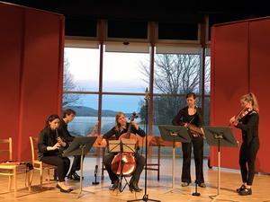Lynx Ensemble består av folkmusiker och barockmusiker från flera länder.