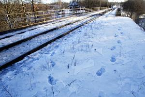 Fotspåren efter ungdomarna i snön vittnar om att det kunde ha skett en tragisk olycka natten mot lördagen.