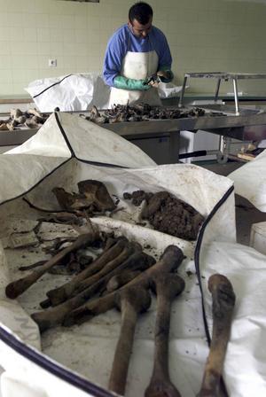 Rättsmedicinsk undersökning i Tuzla 2001 av fynd från en massgrav i byn Liplje där hundra säckar med mänskliga kvarlevor hittades.