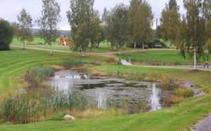 Dammen, rejält djup på sina ställen, fortsätter till höger om träbron i mitten av bilden. Från klätterställningen är det cirka 30 meter till kanten av dammen. Ett barn på väg ner mot dammen