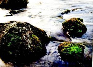 Form och vatten. Motiven var många i Fotomaran som gick av stapeln under ett dygn i augusti.