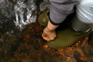 Anna Hansson plockar upp en flodpärlsmussla.