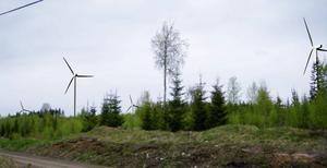 Enligt Melcher Falkenberg, ansvarig för Jämtkrafts investeringar i vindkraft, planeras det investeringar på tiotals miljarder i länet.Foto: Vindkraftgruppen