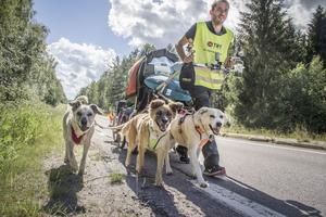 Paulo Teixeira och hundarna  Jacky, Enya och Heidi kallar sig för team Golden heart.