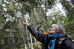 Lisbeth Jakobsson hade rest från Sundsvall för att vara med på lördagens långskäggsutflykt utanför Hassela.