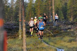 Ultravasan 90 km 2015, Jonas Buud i ledning möter soluppgången på myrarna före Mångsbodarna. I mål blev det ny rekordtid.