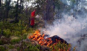 Branden vid Svarttjärnsberget norr om Trönö kunde begränsas till 8-10 hektar trots att det var svårt att få fram vatten till platsen.
