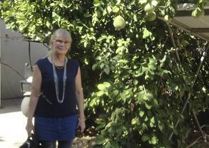Kerstin Agmon är svensk veteran på kibbutzen Yagur.   Foto: Mose Apelblat/TT