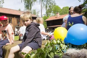 Att åka häst och vagn är det Hugo Virsand gillar mest med nationaldagen.