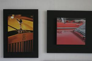 Johan Adlercreutz visar fotografier på bildetaljer, många av bilderna har han tagit med en vanlig kompaktkamera.