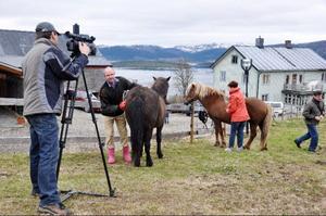 Kameramannen Stanislav Selskiy är snabb med utrustningen och springer än hit, än dit, för att få bra bildvinklar från besöket hos Ola Sundquist och Elin Eriksson, som driver Rid i Jorm där programledaren Marina Toptyguna ska göra ett inslag om islandshästar i fjällmiljö.