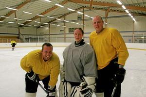 Hockeytrio. Tre viktiga, och rutinerade, spelare i Sala Hockey, från vänster: Johan Modén, Nicklas Ekstedt och Jonas Larsson. Foto: Niclas Bergwall
