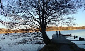 Vid en promenad på södra Björnö, tog jag denna bild.