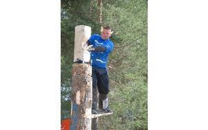 Springboard är en grenarna man kan tävla i- Man hugger fickor i en stam, stoppar in en planka med jänklack på så att den låser fast sig. Det krävs två stycken sådana. Därefter ska man stå på den övre plankan uppe i luften och hugga av ett block med yxa.
