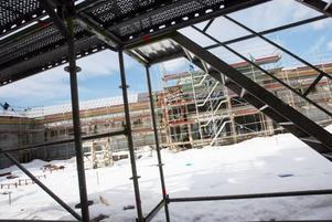 Den stora innegården ska ha planeringar och plattlagda gångar för enkel tillgänglighet.
