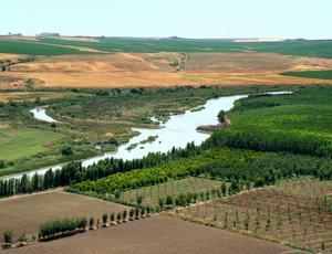 Kring floden Tigris, som flyter från Turkiet till Persiska viken, växte tidigt en jordbrukskultur fram.