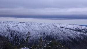 Ovanför trädgränsen låg det snö i Sälenfjällen på söndagsmorgonen.