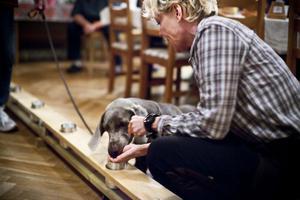 Anette Ullmark Hellström uppmuntrar på bilden hunden Tajj att spåra kaffe.