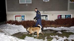 Polisen sökte med hund i området efter gärningsmannen.