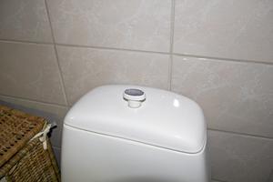 Du kanske gör rent toalettstolen noga, men missar spolknappen? Det är lätt hänt.