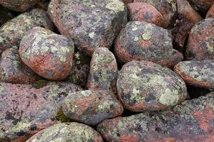 Kartlavarna på stenarna kan bli mycket gamla, över 1000 år. Om de får ligga i fred.