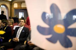 Väl analyserade väljare. Sverigedemokraternas anhängare har granskats i flera rapporter och debattinlägg.foto: scanpix