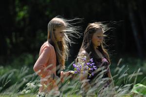 Midsommar flickor på blomjakt ute i Skerike. Johanna och Elin njuter i solskenet