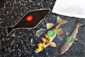 Fisket hotar vissa fiskar, medan man kan fiska och äta andra med gott samvete.