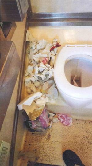 När blöjor och kaffefilter trycks ner i toaletterna blir det stopp flera gånger i veckan.