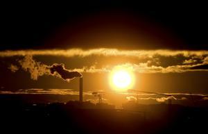 När koldioxiden skildras som ett hot mot allt liv på jorden är detta är systematisk desinformation. Den får träd och grödor att växa och skapar det syre allt levande är beroende av, skriver Tege Tornvall. Foto:JESSICAGOW / SCANPIX