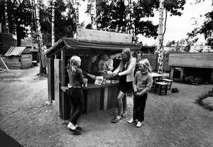 Bygglekplatsen på Viksäng i juli 1970.