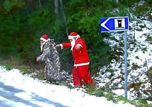 När Njurunda PROs resa gick till Bergsjö, där ett läckert jubord skulle inmundigas, fick de se detta. I höjd med Armsjön kom dessa tomtar ilande från skogen. Det bevisar att tomtar har andra brådskande ärenden än julklappsbestyr, inför julen. Det kändes skönt med bekräftelsen att även de har mänskliga behov. Fotot togs av Benne Teir från Kvissleby.