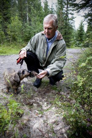 Älgen fälldes i närheten av elljusspåret på Vårdkasberget. Gunnar Stenvall med hunden Scilla har återvänt till platsen där det hände.