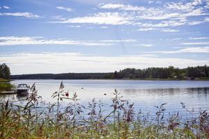Det är framför allt i inre Norrfjärden som vattenkvaliteten har påverkats, enligt kommunens rapporter.