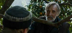 Lembit Ulfsak gör rollen som mandarinlundens fredsmäklare Ivo.