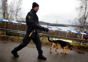 Polisen har fortfarande inga konkreta spår efter de två män som i måndags kväll rånade ett företagarpar i Ankarsvik, Alnö. Roger Wiklander sökte med sin hund igenom terrängen runt huset, i jakt på föremål som kan kopplas till rånet.
