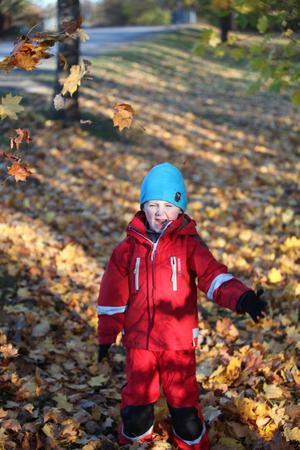 Fokus på löven när sonen leker...