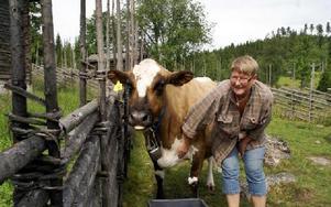 Maria Asterkvist med kloka kossan Lillemor.FOTO: HANS BLOOM