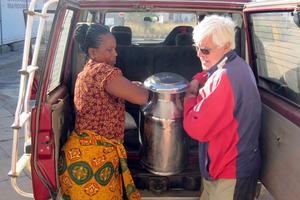 Bertil Wennberg och en massajkvinna hjälps åt att lasta av mjölkkrukor vid mejeriet i Simanjiro ute på massajstäppen.