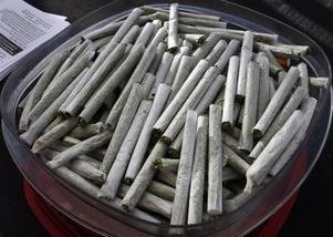 Sverige kan ha en justitieminister som tror man kan dö av en marijuanaöverdos.