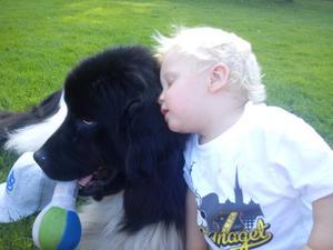 Människans bästa vän! Storleken har ingen betydelse. Hunden Korina och min son Rasmus 1år, är bästa kompisar. Om min son ser hunden som ett vandrande skinn, eller om hunden ser min son som en levande matfabrik (Rasmus ger gärna Korina något gott att äta på), är det ingen som vet. Ihop sitter dom och mycket bus hittar dom på.
