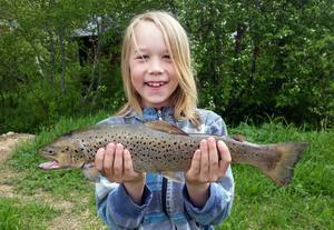 Atle Forsman, 9 år,i Lillhärdal fick en gädda och den här öringen när han provade sitt nya fiskespö i Orrmosjön. Öringen vägde 1 174 gram och gäddan 877 gram