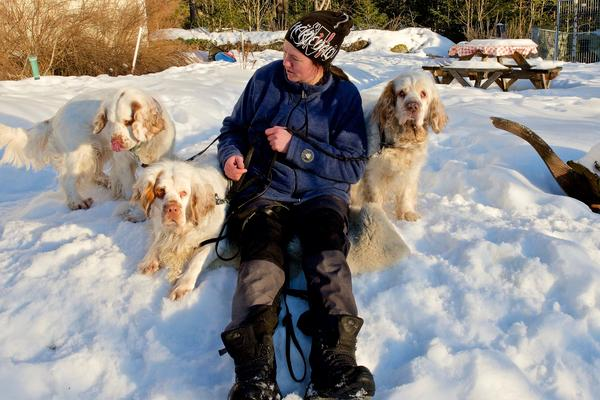 Hundar är en stor del av Maries liv. På gården svansar tre clumberspanielar runt och är galet glada. Marie har flera instruktörsutbildningar för hundförare och håller kurser på brukshundklubben.