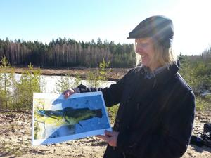 Foto av Dvärgmalen som härjade i Närkes Kil.