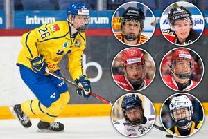Rasmus Dahlin, Adam Boqvist, Isac Lundeström, Jacob Olofsson, Filip Hållander, Adam Ginning och Albin Eriksson tippas gå i den första rundan av sommarens NHL-draft. Foto: Bildbyrån